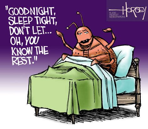 bed bug cartoon goodnight bed bugs funny cartoon bed bugs pinterest