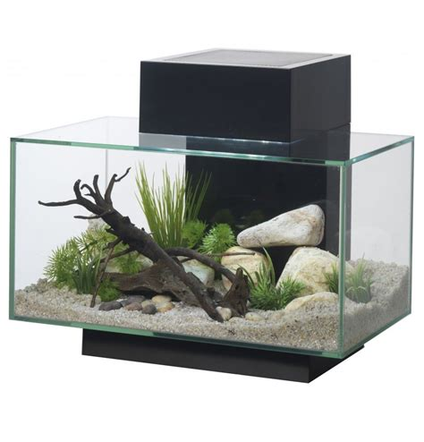 aquarium design edge fluval edge 23l aquarium swell uk ltd