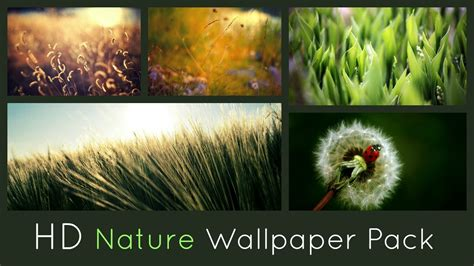 hd nature wallpaper pack  youtube
