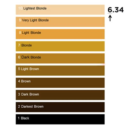 why do we use color brown in 2015 color trends hair colour numbering system l or 233 al professionnel