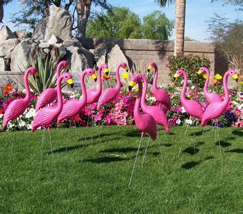 yard flamingos plastic flamingos lawn flamingos - Pink Flamingos In The Front Yard