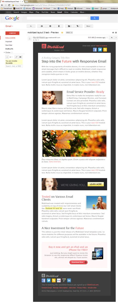 gmail themes for chrome mobilized i responsive modular email templates by
