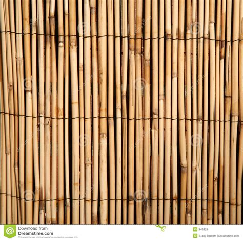 bamboo pattern texture bamboo pattern background royalty free stock photos
