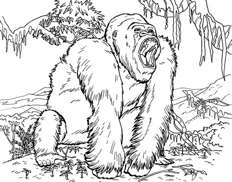 gorilla colors gorilla coloring pages to