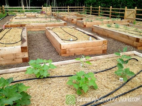 Raised Vegetable Garden Planner Raised Bed Garden Layout Raised Garden Bed Layout