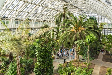 Rambles Around British Gardens Plant Seeds Of Inspiration Palm House Botanic Gardens