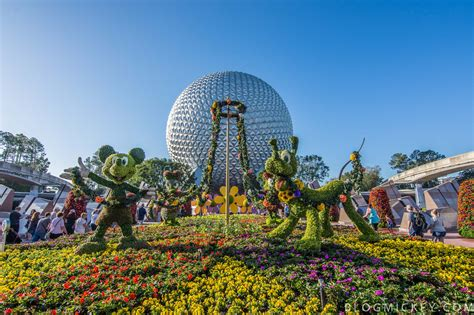 flower and garden epcot photos 2017 epcot flower and garden festival topiaries