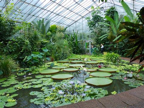 Edinburgh Botanical Garden July 2013