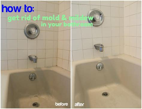 How To Get Rid Of Shower Mold by The About Bathroom Christinas Adventures
