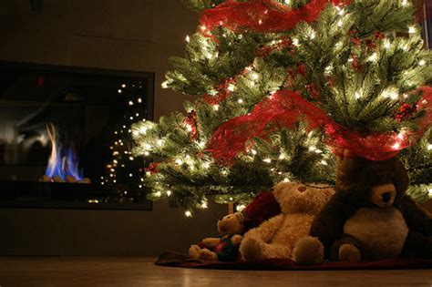 bears under the christmas tree pictures photos and