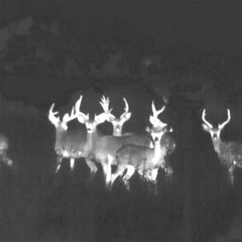flir vision flir scout ii 320 thermal thermal imaging cameras
