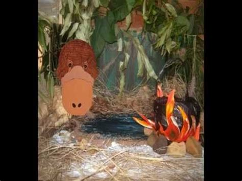 Wombat Stew Performance Youtube Activity For Children To