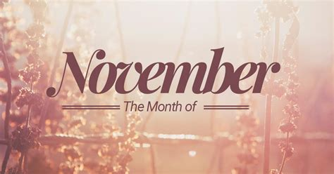 for november november 11th month of the year