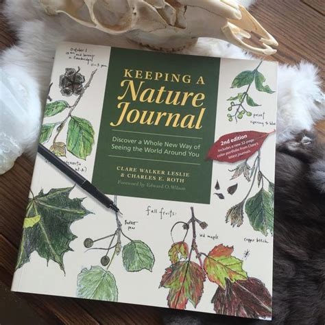 libro keeping a nature journal keeping a nature journal by c leslie c roth curious nature