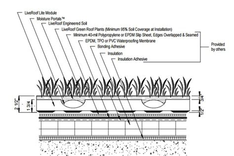 roof garden detail section detail drawings liveroof hybrid green roofs