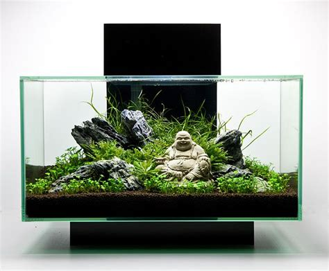 25 best aquascaping ideas on aquarium ideas