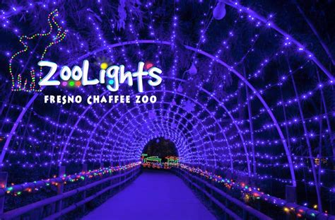 fresno chaffee zoo lights all is merry and bright this season with a host of