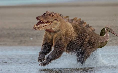 real or fake 8 bizarre hybrid animals live science i m just going to leave these photoshopped animal hybrids