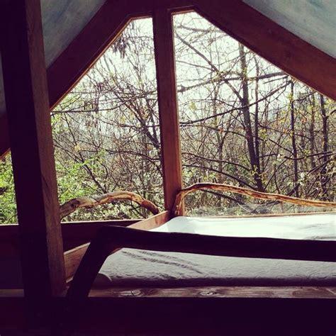 la casa sull albero cuneo casa sull albero toulipier il giardino dei semplici