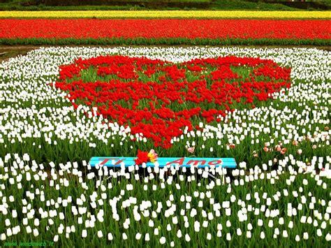 ci di fiori immagini spedisci una cartolina per san valentino in the wind