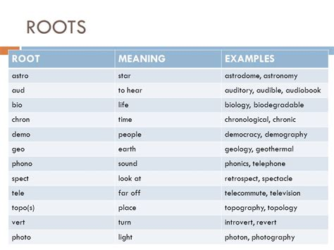 biography root word meaning roots affixes prefixes and suffixes ppt download