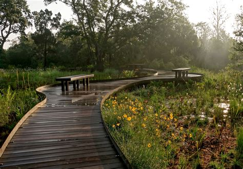 learn how to landscape fresh at excellent wetland boardwalk cusribera