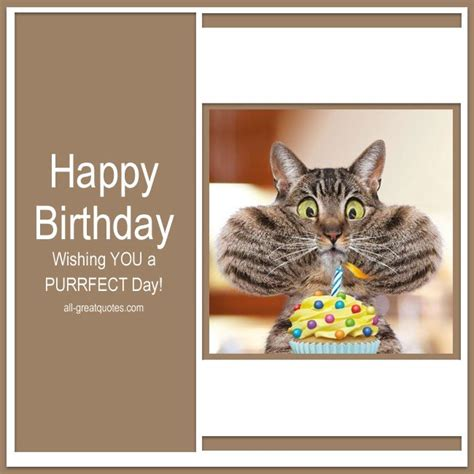 Happy Birthday Wishing You Happy Birthday Wishing You A Purrfect Day Facebook