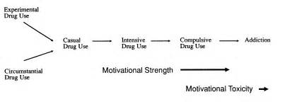 Use illustrating the progression from casual drug use to addiction the