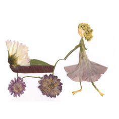 pressed pressedatlcom 1000 images about pressed flowers on pinterest pressed
