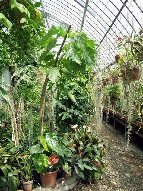 giardino botanico pisa l orto botanico di pisa il primo orto botanico
