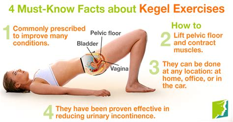 Tight Pelvic Floor by 4 Must Facts About Kegel Exercises