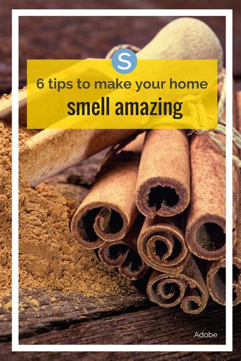 6 Tips For Breathtaking Photos by 6 Tips To Make Your Home Smell Amazing Diy Ideas Make