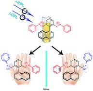 chemical induction of dimerization dynamic induction of enantiomeric excess from a prochiral azobenzene dimer circularly