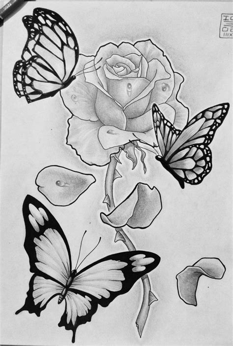 rose tattoos pinterest simple butterfly flower sketch image 52 best