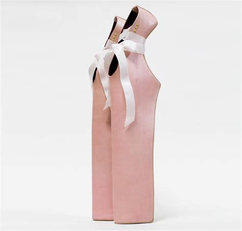 pointe shoes for gaga by noritaka tatehana