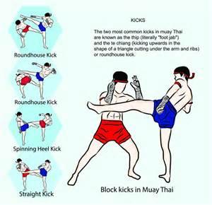 Boxing techniques pdf kick techniques pdf muay thai techniques kicks