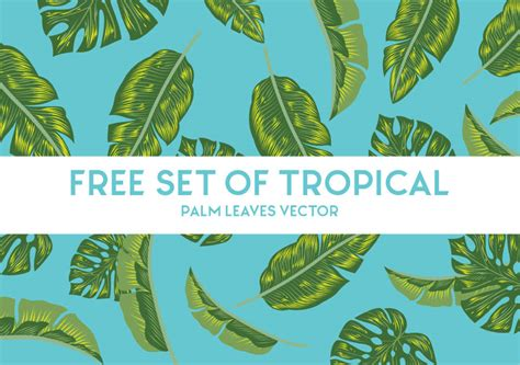 free design resources vector free tropical palm leaves vector free design resources