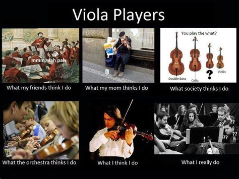 Orchestra Memes - viola player s meme orchestra band pinterest a well