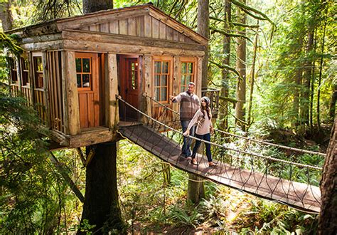 treehouse vacations the out n about treesort in oregon one of five cool