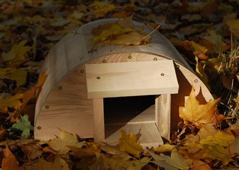 buy hedgehog house buy hedgehog house delivery by crocus