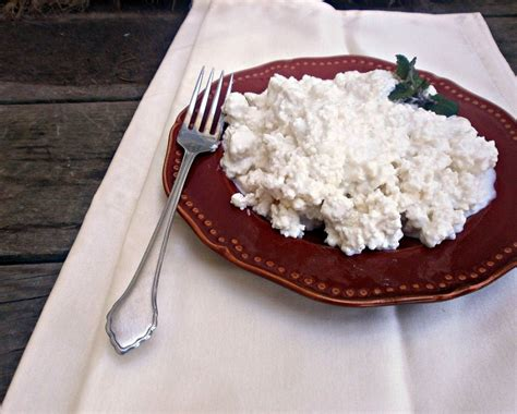 cottage cheese with vinegar eat like no