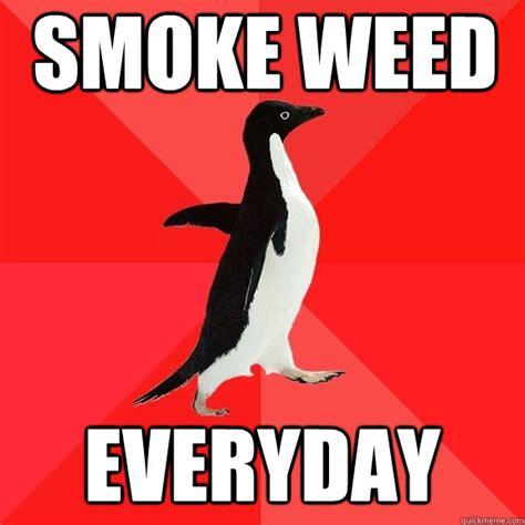 Smoke Weed Everyday Meme - smoke weed everyday socially awesome penguin quickmeme