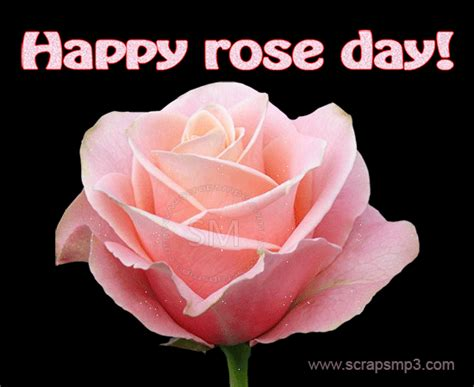 themes for rose day 22 very best rose day glitter pictures
