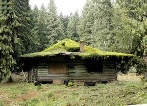 Mountain Cabin Mountain Cabin Once A Family Getaway This Mossy Roofed