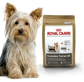 yorkie food royal canin mini terrier 28 food 2 5 lb bag