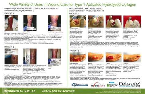 types of wound dressing pictures examining the effectiveness of type 1 activated hydrolyzed