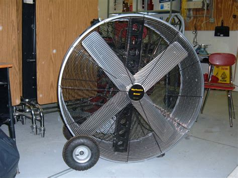 Barn Fans help your pets beat the heat all the creatures