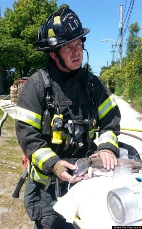 puppy rescue seattle seattle firefighter rescues puppy from burning home