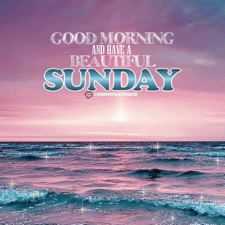 sunday good morning beautiful good morning pictures sunday impremedia net