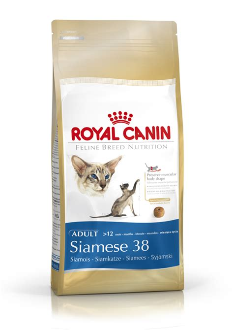Royal Canin 2 Kg Cat 30 feline breed nutrition royal canin siamese cat food 2kg pets zone